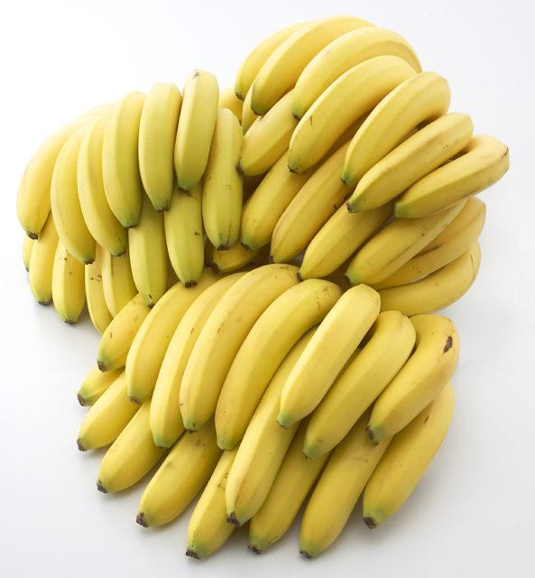 衝撃!そんなバナナ!熊本でバナナを作ってる人がいる!!