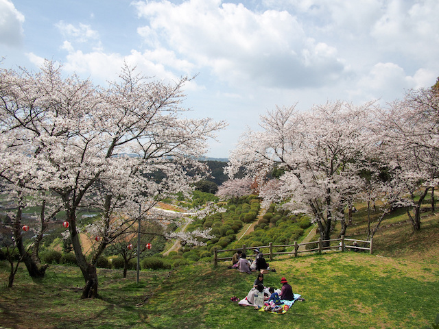 【熊本観光地】桜とツツジが綺麗で心霊スポットでもある『田原坂公園』と『田原坂西南戦争資料館』のスポット解説