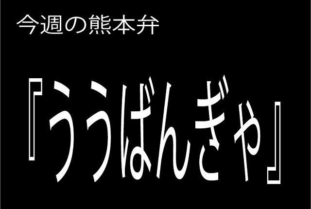 今週の熊本弁 【ううばんぎゃ】 - - どぎゃん言うと?熊本方言講座