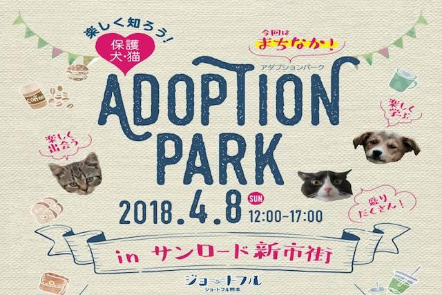 村上美香さんも参加!熊本・新市街アーケードで犬・猫の保護・譲渡活動「Adoption PARK」開催