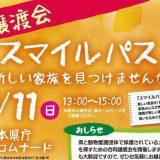 熊本の犬猫譲渡会『スマイルパス』新しい家族見つけませんか?開催11/11