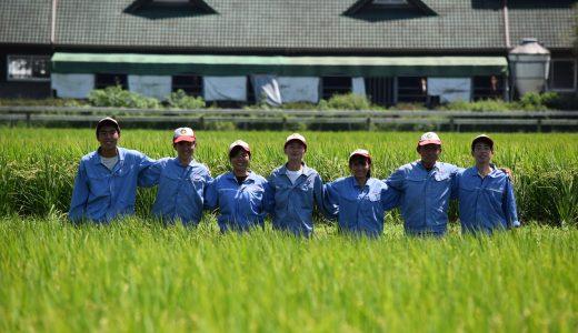 """熊本あさぎり町の高校生が復活させた球磨の伝説の""""南稜米""""が育む若者の未来とは"""