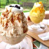 熊本でおいしい台湾かき氷が食べられる『ぺんぎんカフェ』フワフワでめっちゃおいしい!熊本市東区佐土原